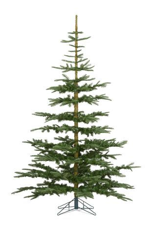 Buy 7ft Noble Pine Christmas Tree From The Next Uk Online