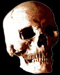 website on Horror Film History — Introduction http://www.horrorfilmhistory.com/