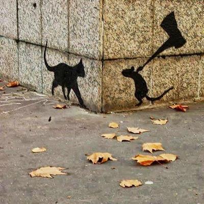 5 imágenes graciosas urbanas 2
