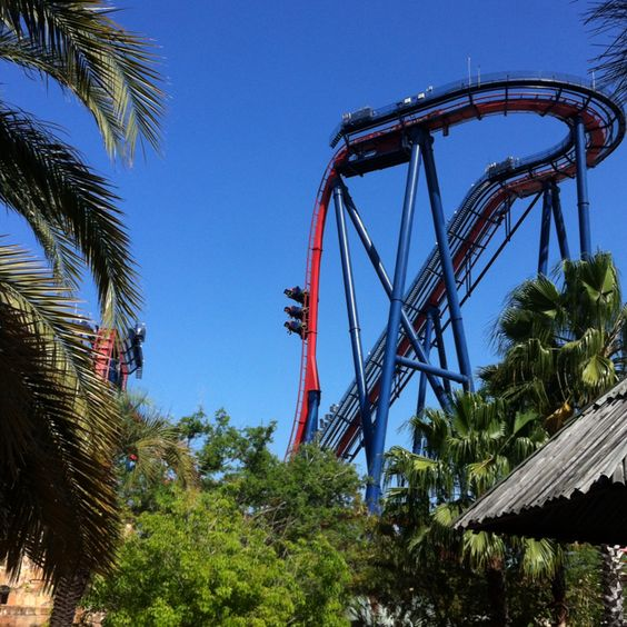 Sheikra roller coaster at busch gardens favorite places - Roller coasters at busch gardens ...