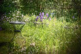 Bildergebnis für naturgarten