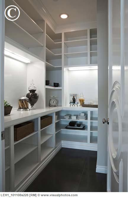 Walk-in-pantry with counter space for appliances (not vases, LOL) ... baskets on shelves. Add pull out shelves, no ugly fluorescent lights.                                                                                                                                                                                 More