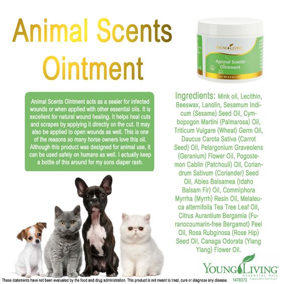 Animal Scents Ointment Safe For Cats