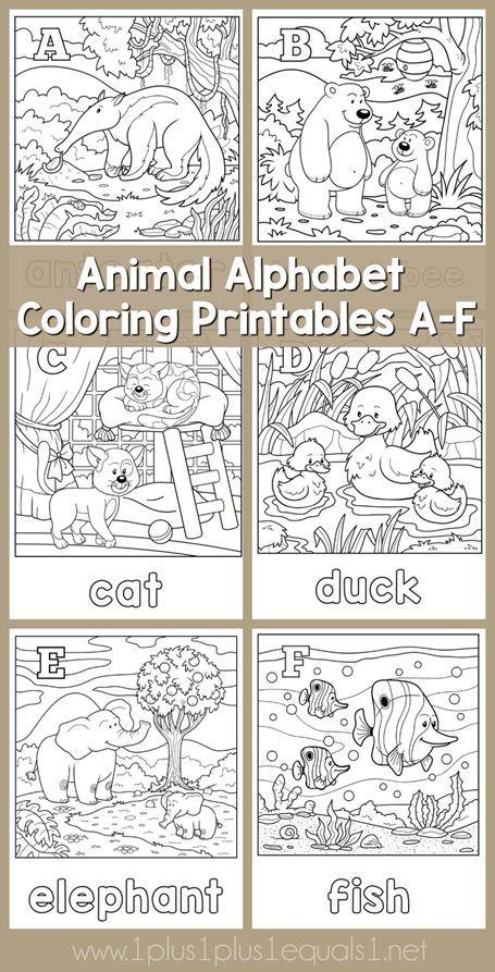 alphabet animals and messages on pinterest. Black Bedroom Furniture Sets. Home Design Ideas