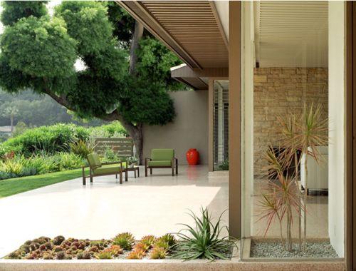 modern patio & garden