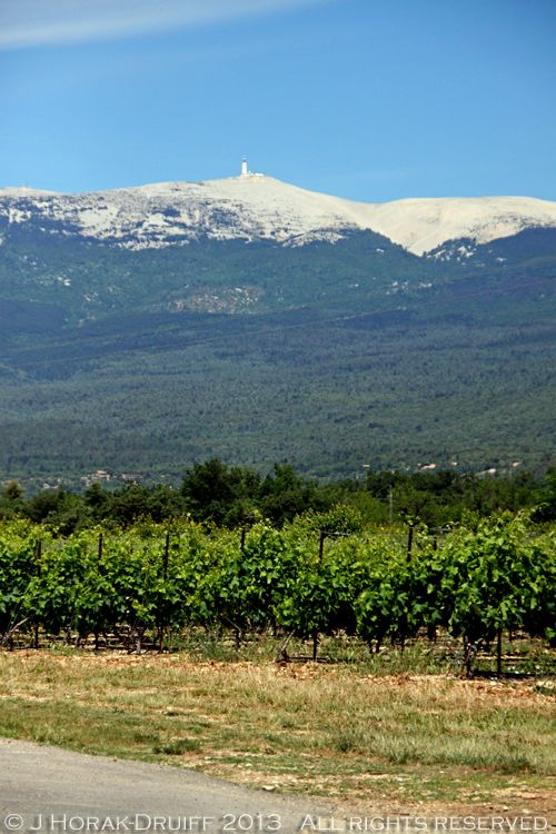 Mont Ventoux, an impressive granite-topped mountain rising above the vineyards of northern Provence...it always looks wonderful on the horizon... :)
