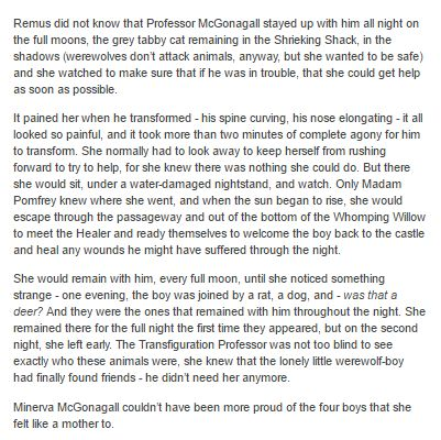 Remus Lupin and McGonagall part 3 by http://minerva-mcgee.tumblr.com/