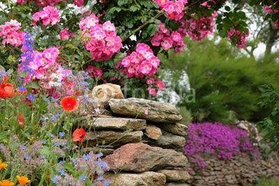 mur fleuri en Bretagne