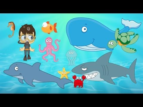 Learn Aquatic Animals For Kids In Arabic تعليم حيوانات البحر للاطفال باللغة العربية Learning Arabic Learn Arabic Online Animals For Kids