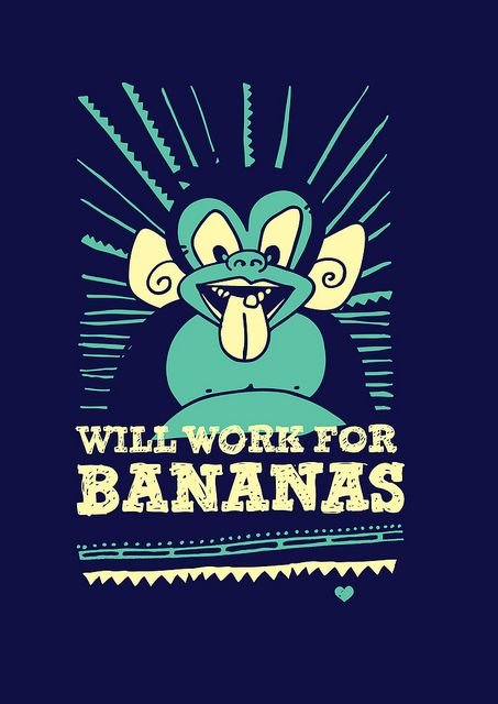 The Midnight Adventures of Ziko : Will Work For Bananas