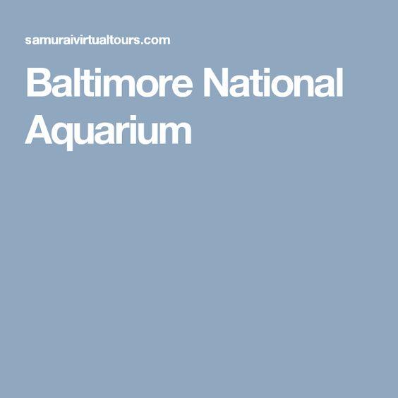 Explore the Baltimore National Aquarium