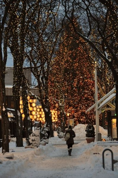 Quincy Market Christmas in Boston
