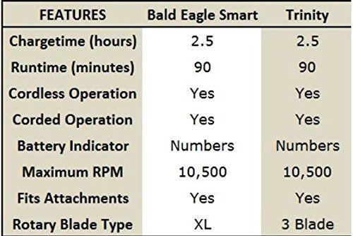 Blacks bald eagle shaved