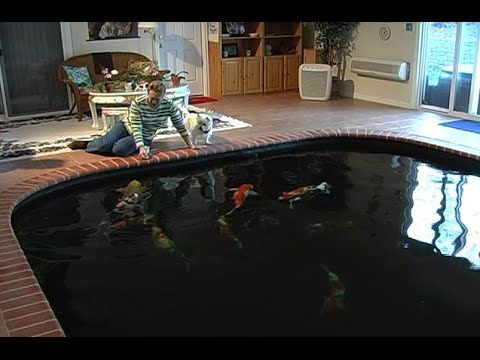 The Koi Pond Of Art Nicole Lembke Youtube Indoor Pond 39 S Idea 39 S Pinterest Koi Ponds