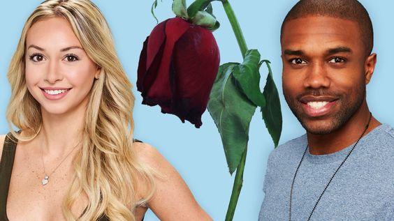 Bachelor in Paradise controversy