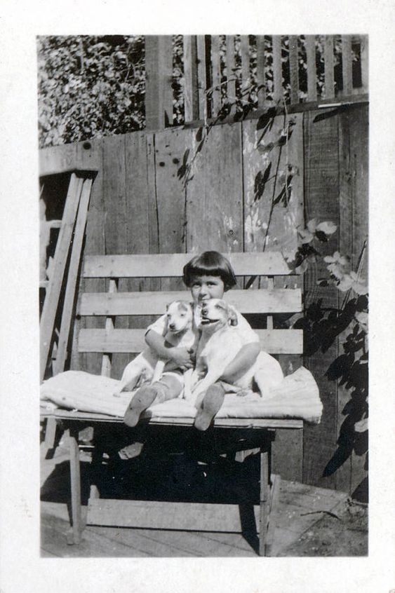 vintage photo Little Girl w 2 Jack Russell Terrier by maclancy, $7.50: