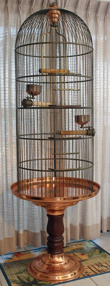 bird cages parrots and copper on pinterest. Black Bedroom Furniture Sets. Home Design Ideas