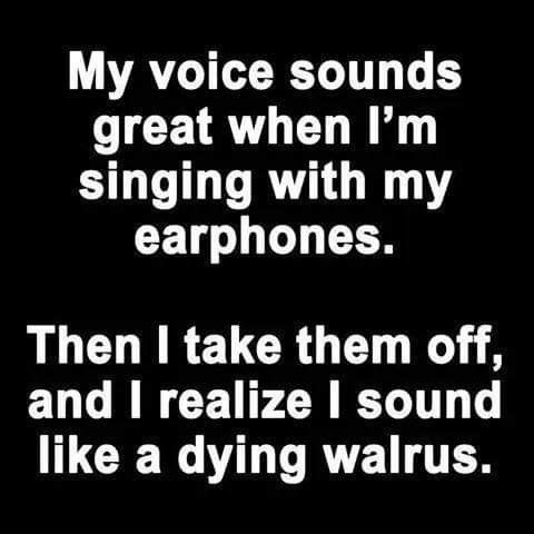 Pin By Clare Phillips On Music In 2020 Funny Quotes My Singing Twisted Humor