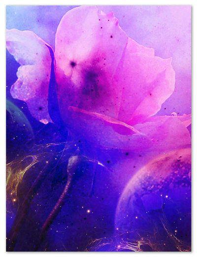 magical flower by *beyzayildirim77 on deviantART