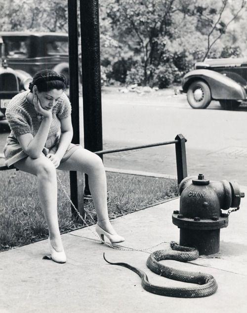 Burlesque dancer, Zorita walking her pet snake, 1937