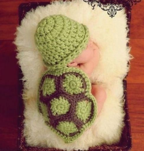 awwww! sweet widdle sleeping turtle ♥: Newborn Photo, Turtle Baby, Baby Photo, Photo Idea, Baby Turtles, Baby Stuff
