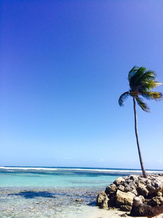 Guadeloupe Eine wundervolle Insel in der Karibik. Diese Foto habe ich im März 2016 aufgenommen.  Weitere Folgen...