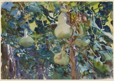 Gourds / John Singer Sargent / transparent and opaque watercolor over graphite on white, thick, rough-textured, wove paper / 1908