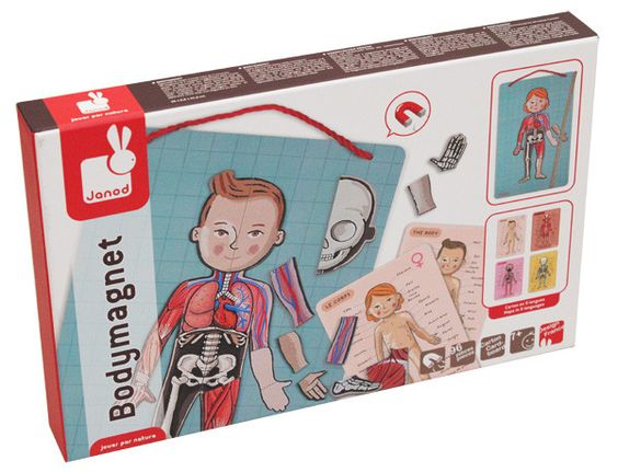A learning game about human anatomy, which teaches children how the parts of the human body, the bones, organs, muscles and skin, fit together. Learn all about the human body while having fun with Jan