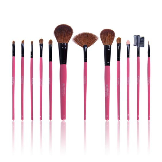 Amazon.com : SHANY Professional 12 - Piece Natural Goat and Badger Cosmetic Brush Set with Pouch - Red : Makeup Brush Sets : Beauty