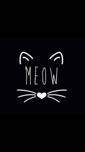Dieses minimalistische Kätzchen, mit dem Du Deine innere Cat Lady zum Ausdruck bringen kannst: