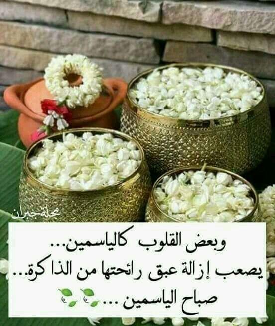 صباح شذى الياسمين للناس الطيبين Good Morning Arabic Good Morning Greetings Morning Words