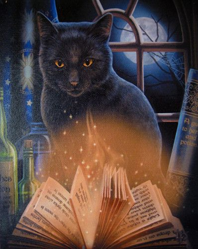 Bewitched Canvas Art Print by Lisa Parker