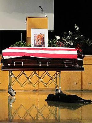Slain Navy SEAL's dog still loyal. need i say more