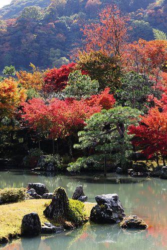 The garden of Tenryuji temple #japan #kyoto  http://www.japanesegardens.jp/gardens/famous/000020.php