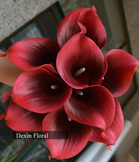 9pcs  36pcs Natural Touch Wine/ Dark Red Calla Lily by DexinFloral, $14.00