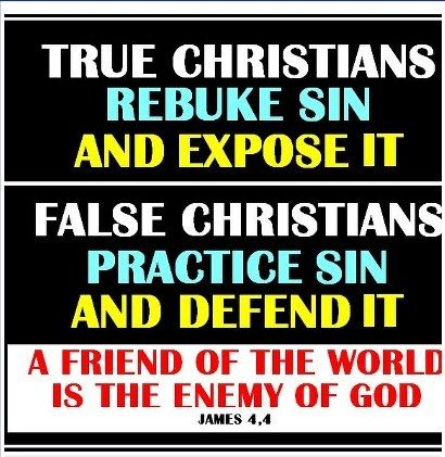 "True Christians VS. False Christians - There will be ""Christians"" and ""Pastors"" out there who will twist, misinterpret and ultimately lie about the Bible for their own convenience, to fit, justify their own or their friends and families lifestyle. Matthew 7:15 ""Beware of the false prophets, who come to you in sheep's clothing, but inwardly are ravenous wolves. ""You will know them by their fruits. Grapes are not gathered from thorn bushes nor figs from thistles, are they?…"