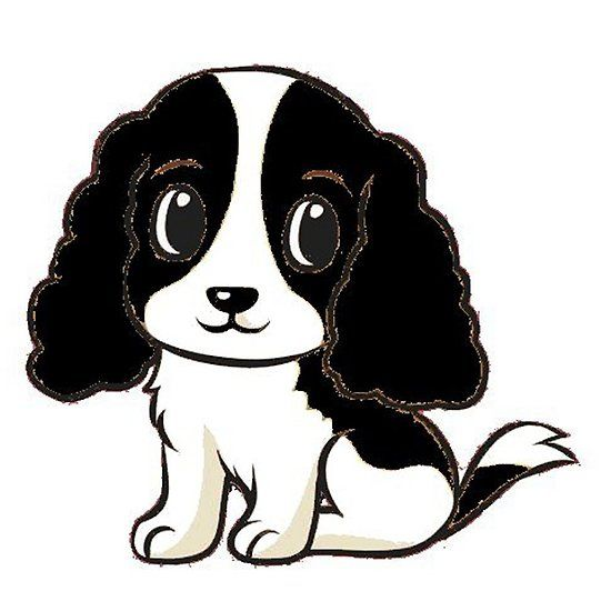 Cavalier King Charles Spaniel Black And White Cartoon Black And White Cartoon Cavalier King Charles Cavalier King Charles Spaniel