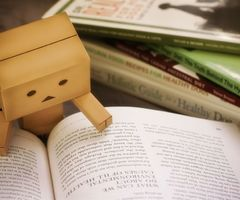 Danbo love to read