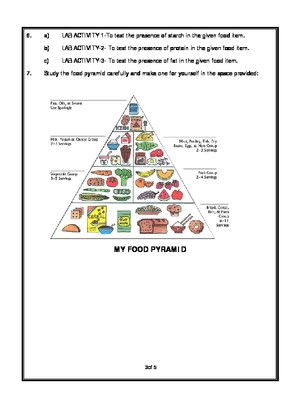 Worksheet Of Components Of Food Food Basic Necessities Science Science Worksheets Worksheets Science