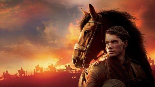 Pin On War Horse Caballo De Guerra 4k Latino Mega