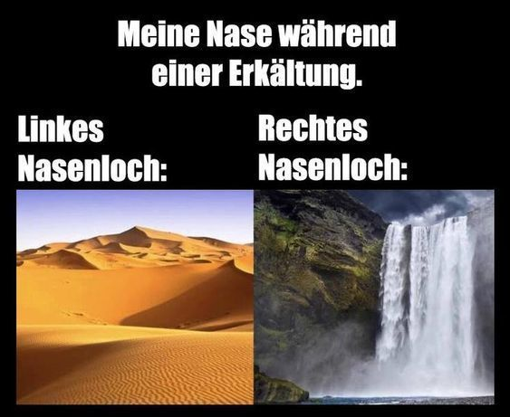 Meme Erkältung bei mir immer so | Funny pictures, Make