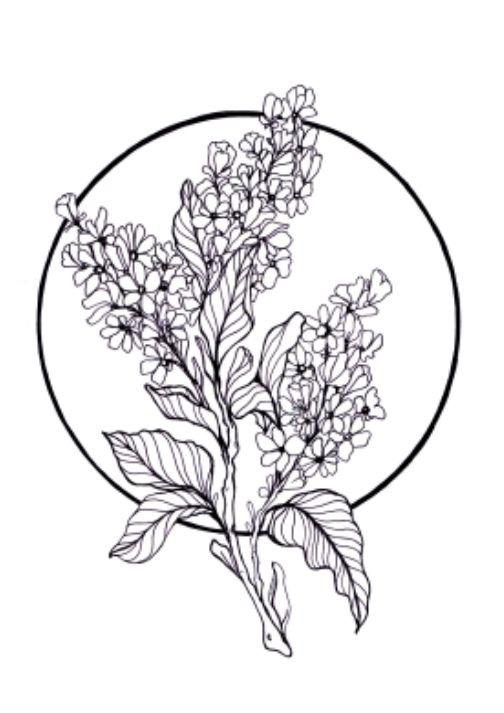 Pin By Rmelin On Tatuli Lilac Tattoo Tattoos Drawings