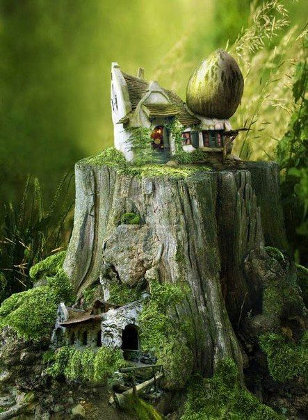 Tiny Faerie house