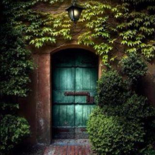 Turquoise door to my secret garden?
