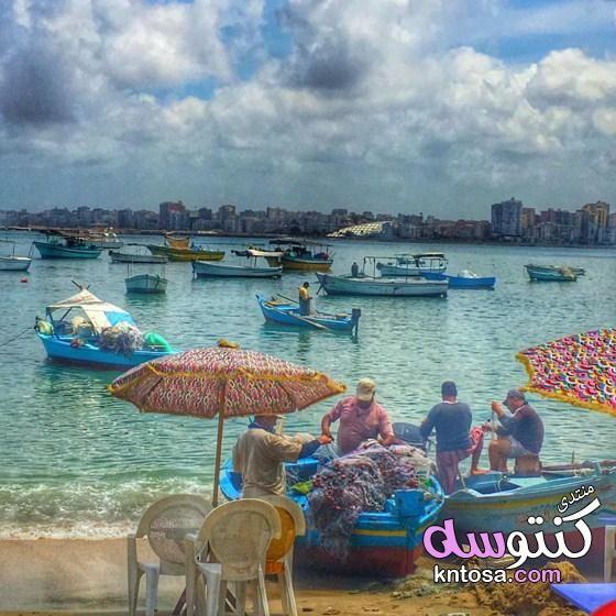 الإسكندرية عروس البحر المتوسط Alexandria Outdoor Pool Float Outdoor Decor