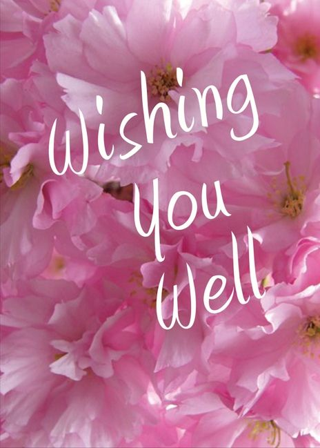 Wishing You Well. Perfect Get Well Soon card for your friends and family. Send this card today! Send a card for $1.98 when sharing from Sendcere.com. Click to send this card.: