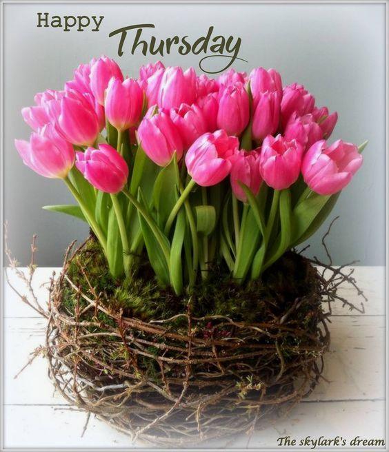Happy Thursday! ❤: