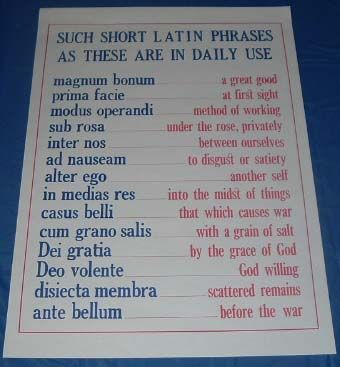 "Latin phrases and their English translation. 25"" X 19"" Poster...Mrs. Miklosovic had a poster like this in her Latin classroom!!!"