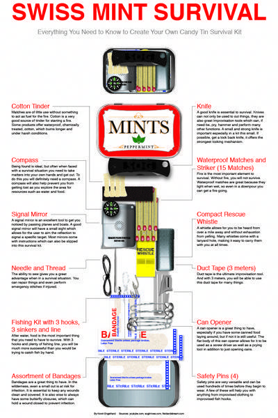 Altoid Survival Kit Diy Create One Of These Tiny Survival Kits With This Easy Diy Survivallife Www Survivallife Survival Kits Diy Survival Kit Survival Tips