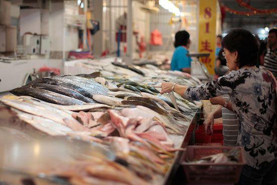 Chợ Tekka nằm ở khu Little India - Khu chợ này chủ yếu bán hải sản tươi sống.